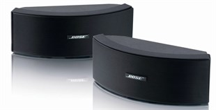 Bose 151SE Environmental Siyah